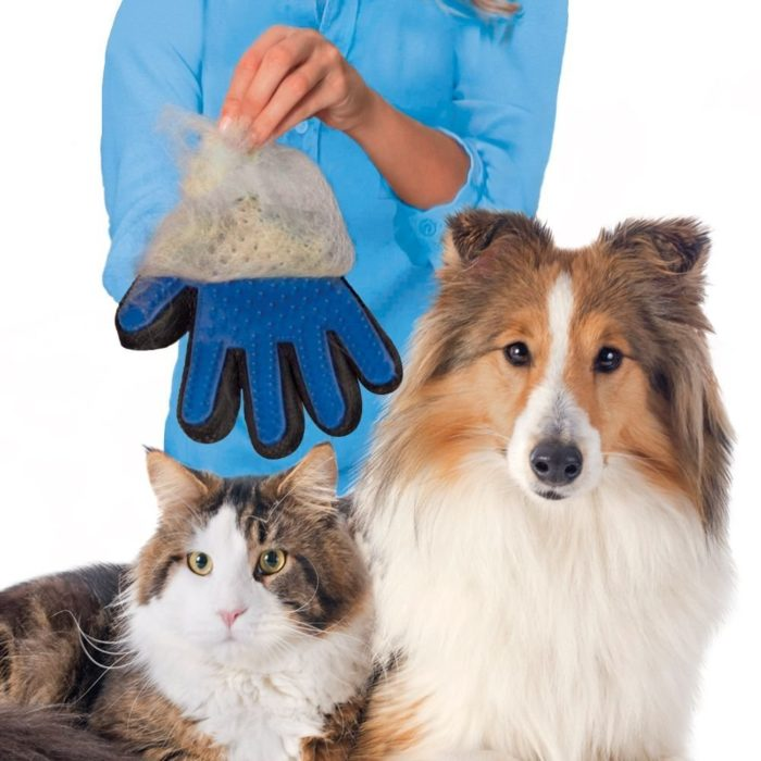 Guante quitapelos para mascotas 40-BN4707
